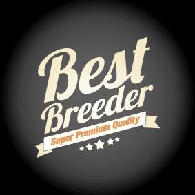 logo-best-breeder-Prevedeny-.jpg